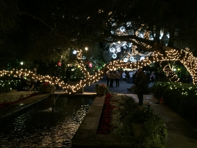 Bellingrath tree lights and fountain
