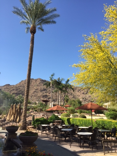 camelbackinnpatio